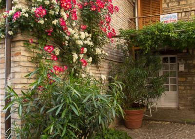Bistro_CheStoria_Marche_Italy_rSJ-9657